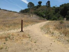 Biltmore Trail to main Marian Bear E-W Trail