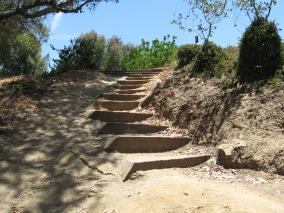 Biltmore steps